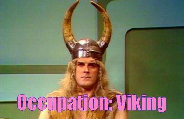 occupationviking